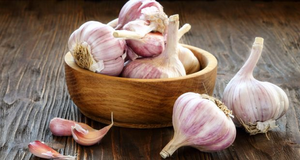 Bulbs of garlic in wooden bowl on table