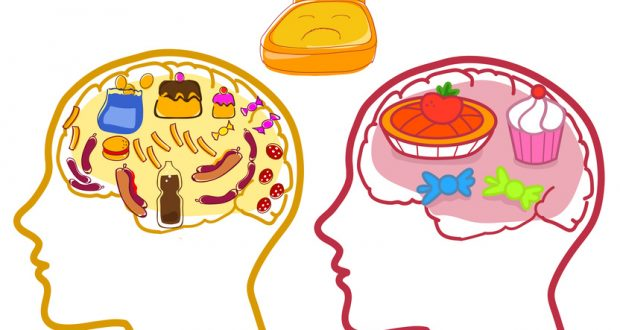 Brain full of unhealthy food images